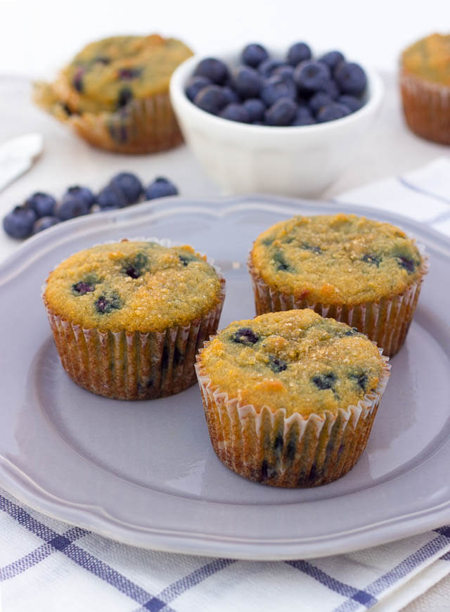 coconut flour blueberry protein muffins