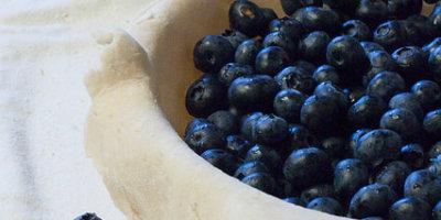 blueberry pie-3