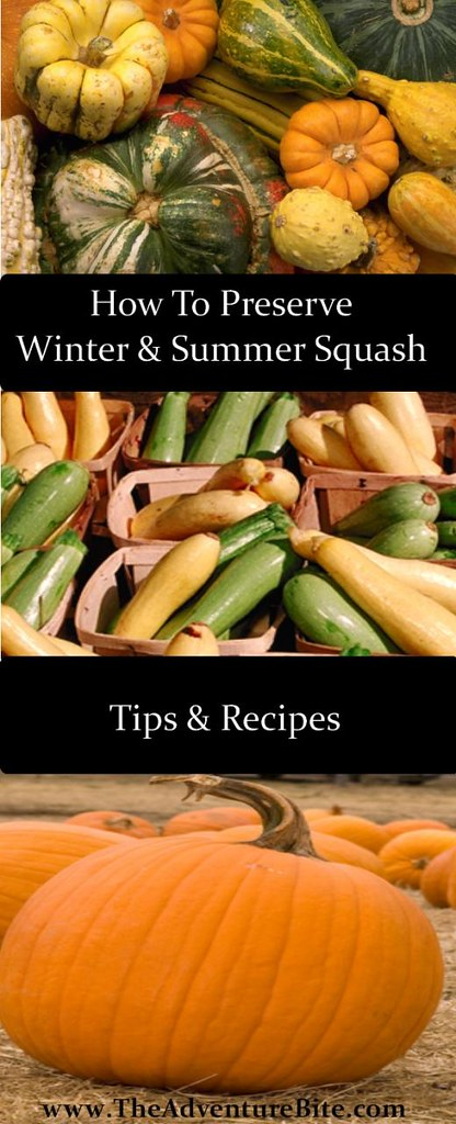 how to preserve winter and summer squash