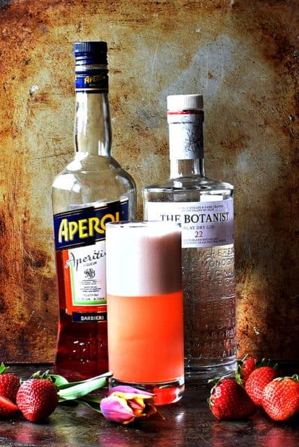 aperol gin fizz
