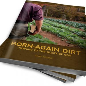 Born Again Dirt Review and Giveaway