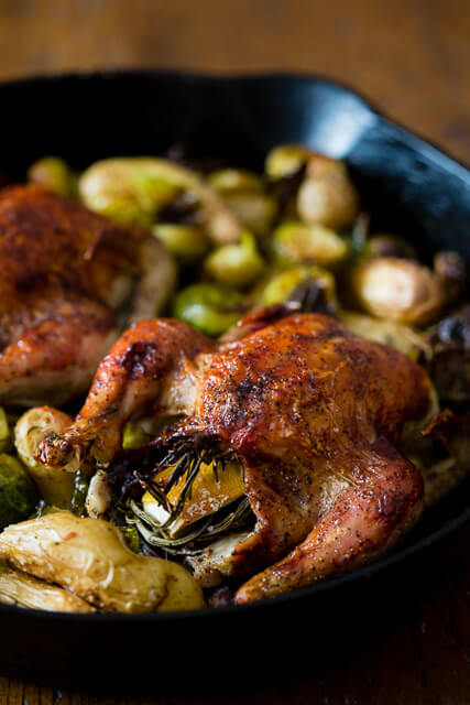 cranberry-bbq-sauce-cornish-hens