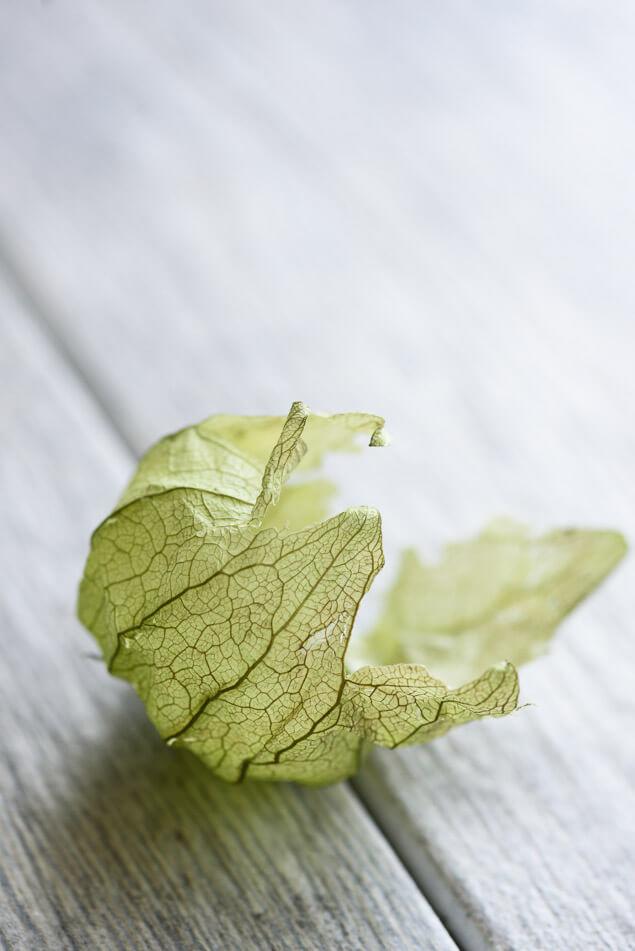 creamy-avocado-sauce